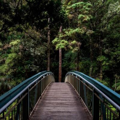 منابع کارشناسی ارشد و دکتری رشته علوم و مهندسی جنگل
