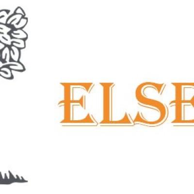 هزینه چاپ مقاله در  مجلات الزویر Elsevier